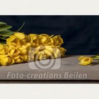 Tulpen (1) - geel