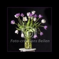 Tulpen (2) - paars op glazen vaas