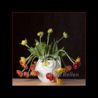 Tulpen (2) - oranje-rood op witte vaas